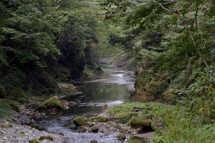 横瀬川.jpg