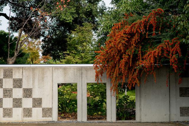 白鳥庭園10.jpg