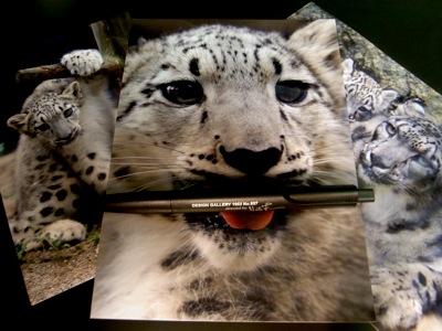 Snow Leopard & LAMY.JPG