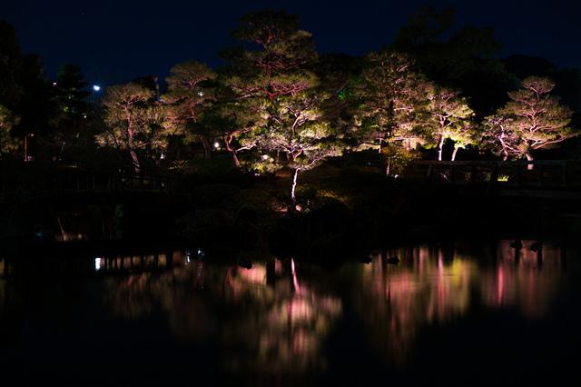 fuyuno hikari art 03.jpg