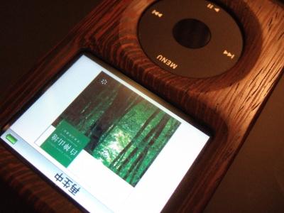 iPod wood.jpg