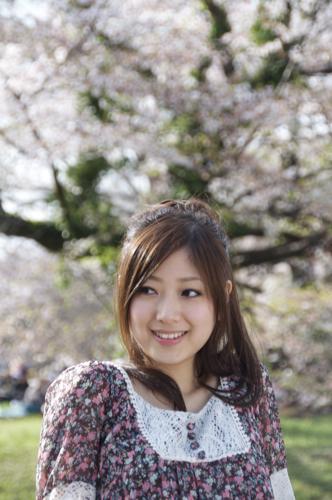 代々木桜11.jpg