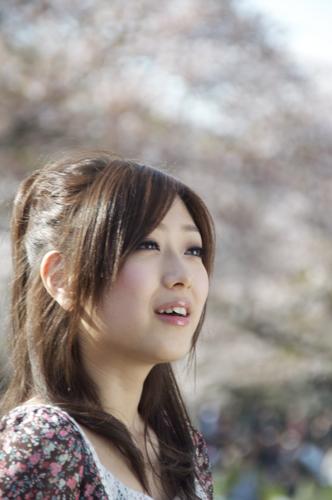 代々木桜3.jpg
