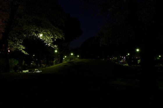 飛鳥山公園 3.jpg