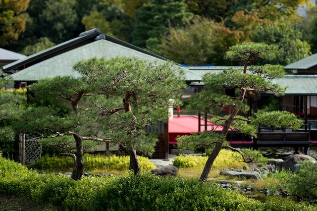 白鳥庭園08.jpg