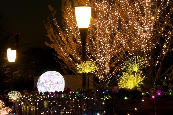 Xmas Illumination 3.jpg